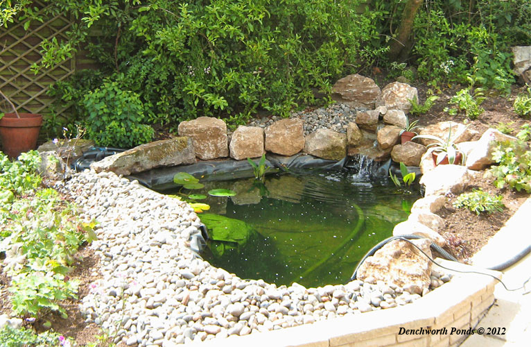 Denchworth ponds and gardens for Garden pond specialists
