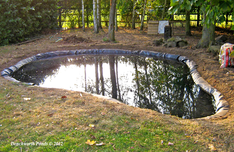 Denchworth ponds and gardens for Building a large pond