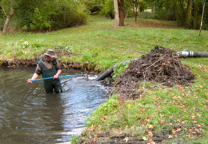 Garden pond cleaning for Koi pond maintenance service